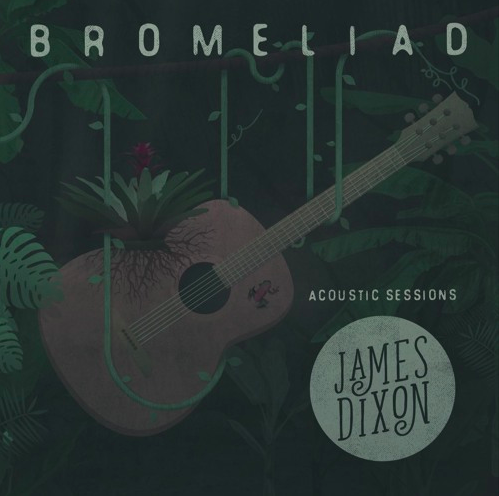 James Dixon Bromeliad